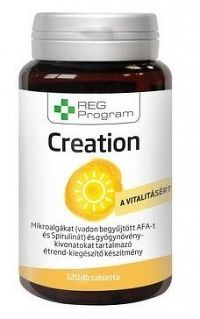 Reg Program Creation 120 tabl-superfood riasy