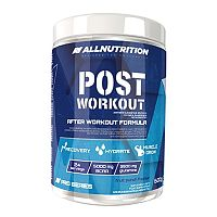 All Nutrition Post Workout 600 g fruit punch