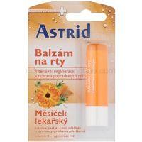 Astrid Lip Care regeneračný balzam na pery s nechtíkom lekárskym  4,8 g