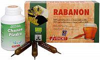 Doporučená kombinace produktů Bio RABANON + Chanca Piedra