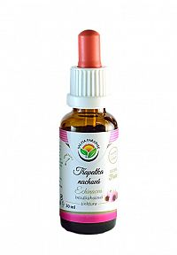 Salvia Paradise Echinacea - Echinacea purpurová AF tinktúra 30 ml