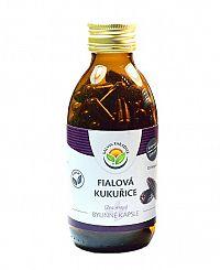 Salvia Paradise Fialová kukurica - Maiz Morado kapsule 60 ks