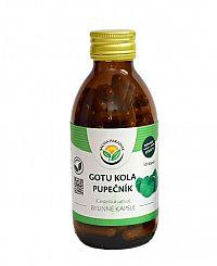Salvia Paradise Gotu kola - Pupočník kapsule 60 ks