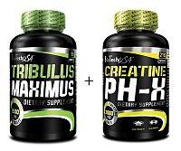 Akcia: Tribulus Maximus + Creatine pH-X Zadarmo - Biotech USA 90 tbl + 90 kaps