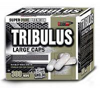 Tribulus - Vision Nutrition 100 kaps.