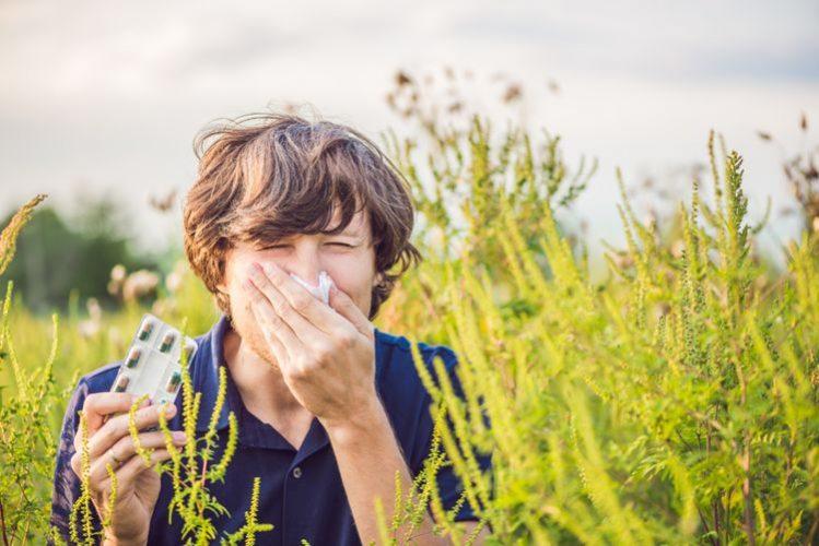 Voľnopredajný liek na alergiu na trávu