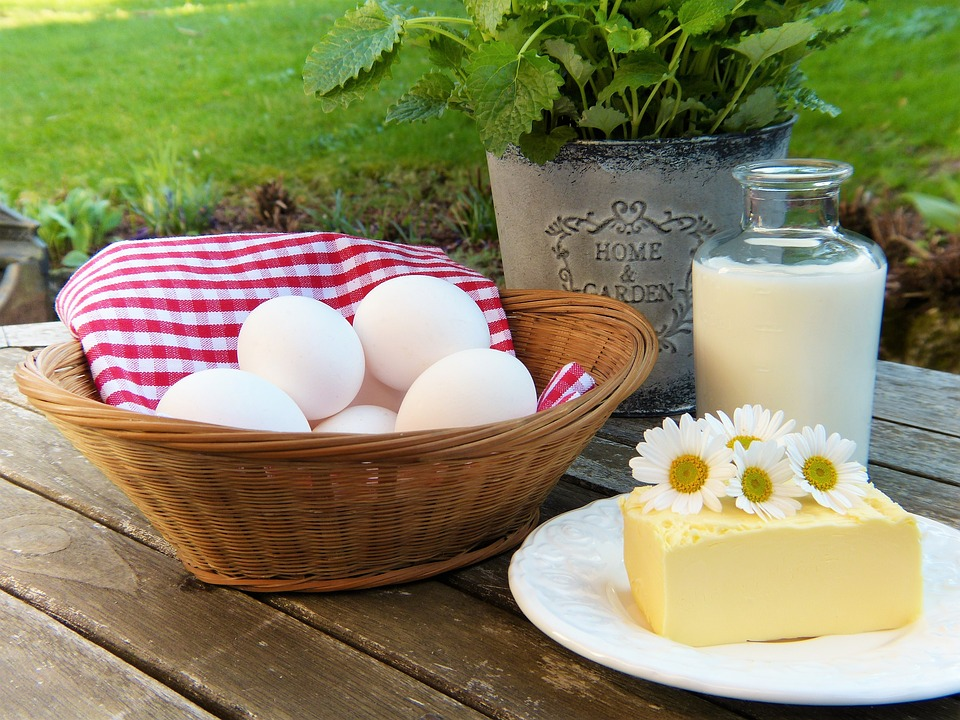 bielkoviny pre bielkovinovú dietu