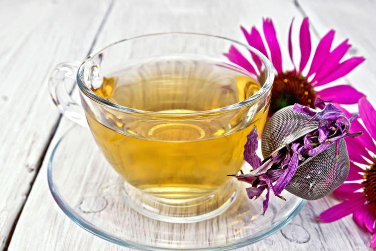 Čaj z echinacei pre deti a dospelých