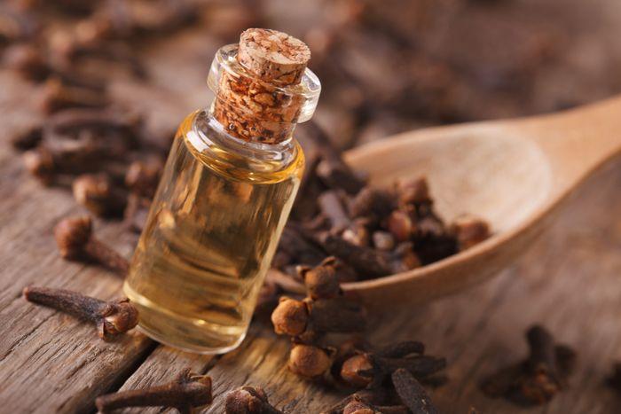 Kličekový olej a jeho účinky