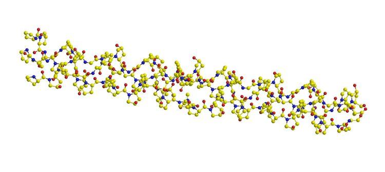 Štruktúra kolagénu trojitý helix