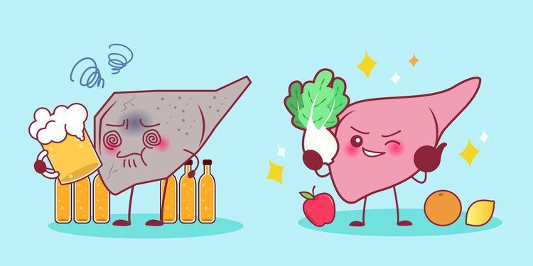Zdravé a škodlivé potraviny pre pečeň